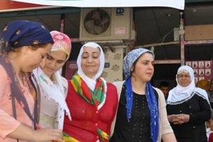 Bismil'de HDP'nin Seçim çalışmaları