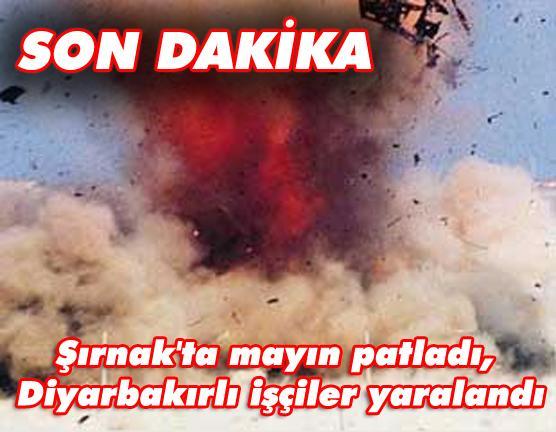 Şırnak'ta mayın Patldı.
