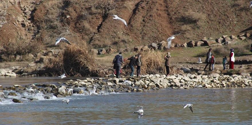 Dicle Nehri'ne akıtılan atık sular halkın tepkisini çekiyor