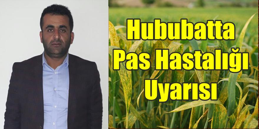 Buğdayda pas hastalığına dikkat!