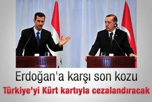 Esad Erdoğan'ı Kürt kartıyla cezalandıracak
