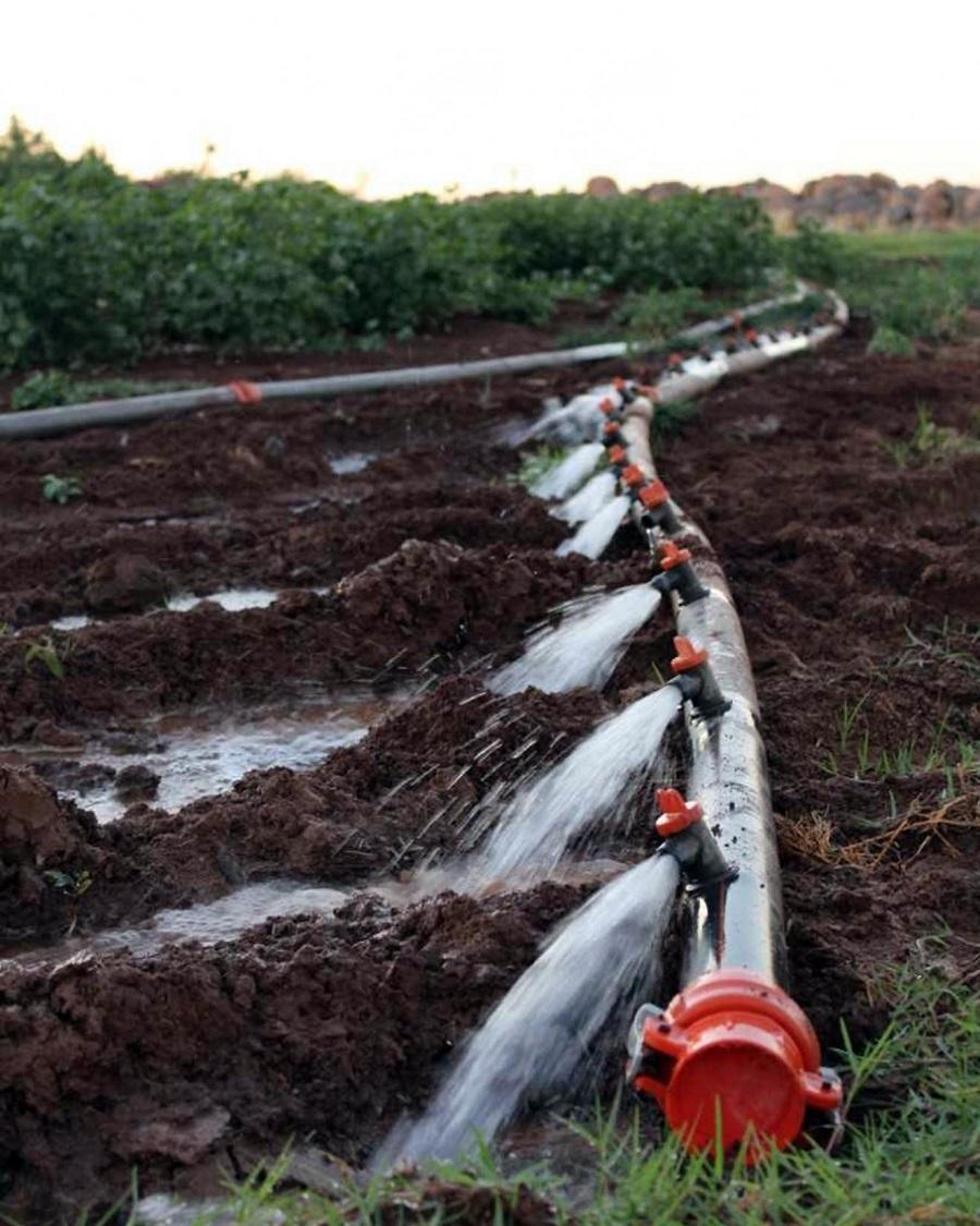 Tarımda elektrik tüketimi yüzde 260 arttı