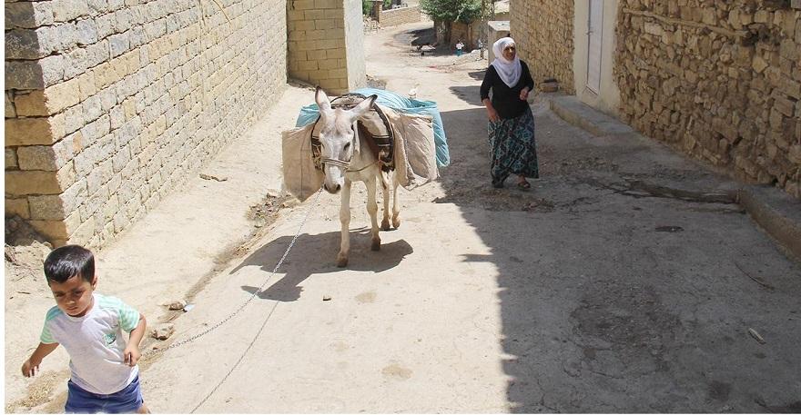 21'inci yüzyılda su ihtiyaçlarını eşeklerle karşılıyorlar