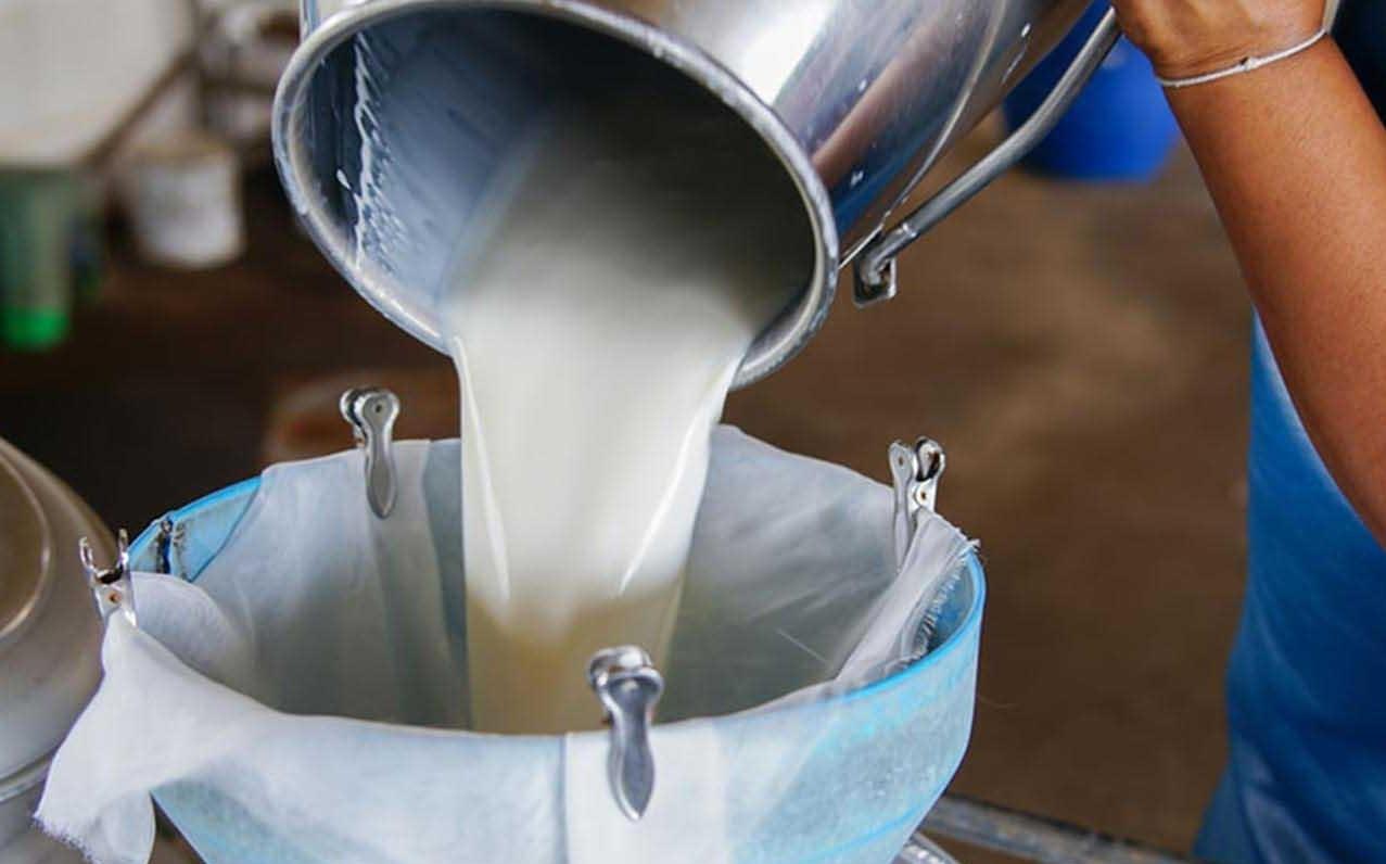 Çiğ süt destekleme kararı Resmi Gazete'de