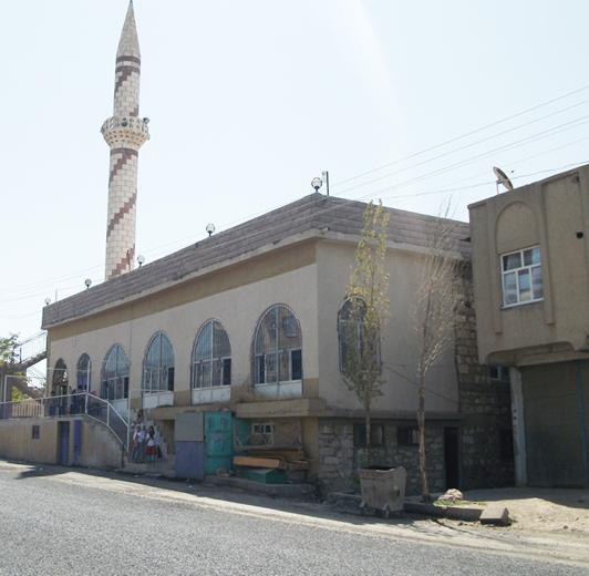 Ergani'de Camide Hırsızlık