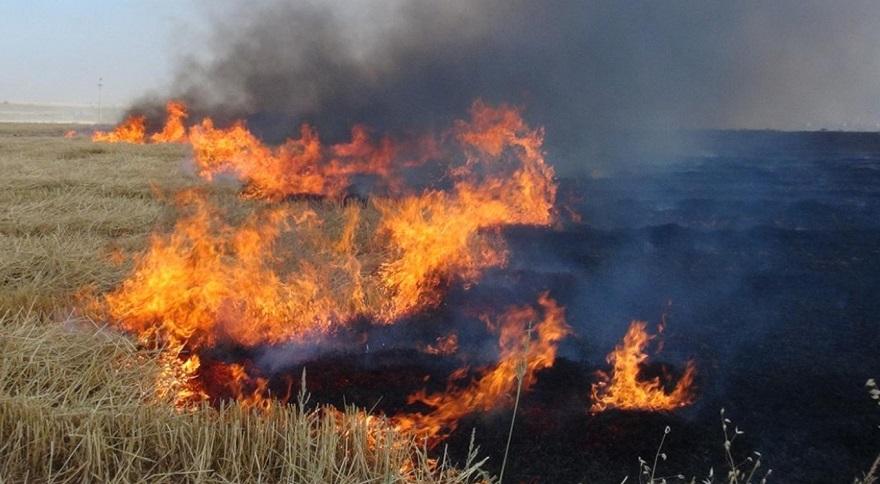 Anız yakılmasının önlenmesine ilişkin bildiri yayımlandı