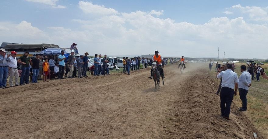 Rahvan At Yarışları Bismil'de Gerçekleştirildi