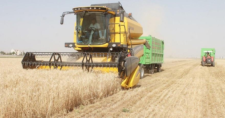"""""""Buğday ve arpa üreticileri daha dikkatli olmalı"""""""