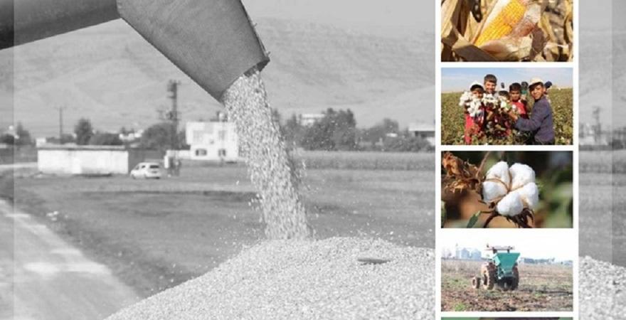 """""""Türkiye'de bilinçli tarım yapılamıyor"""""""