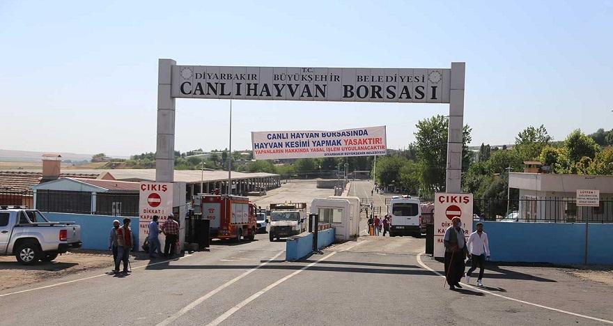 Tadilat sonrası yeniden açılan Diyarbakır Hayvan Borsası, yetiştiricilerin tepkisini çekti