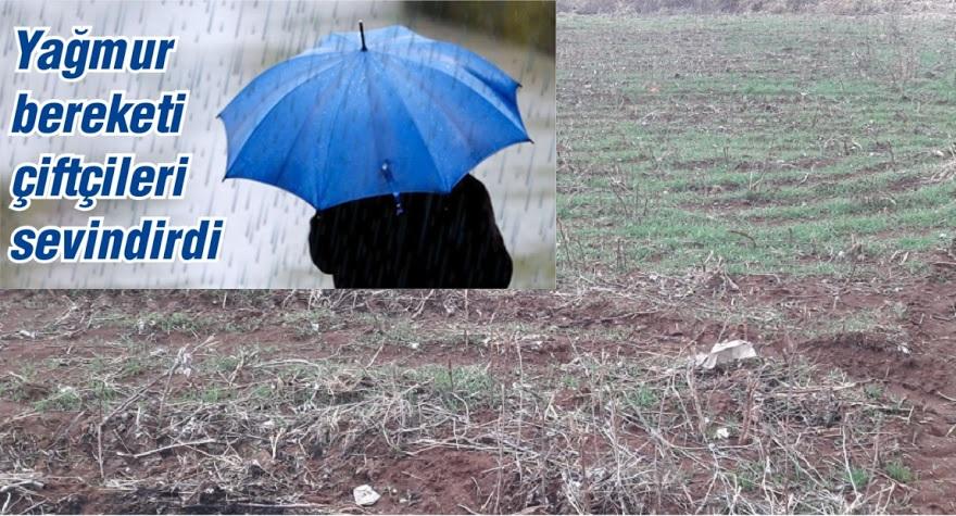 Kuraklık riski altındaki Bismil'de yağan yağmur sevindirdi.