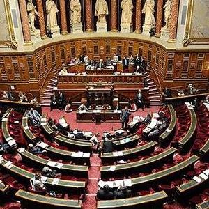 Fransa Yasayı Onaylarsa Ne Olacak