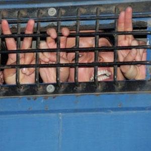 BDP'li Belediye Başkanı'na KCK Gözaltısı