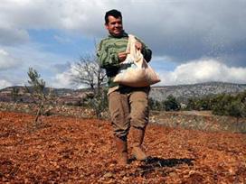 Çiftçilere 7.6 milyar lira destek