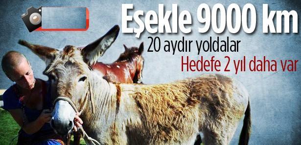 At eşek ve köpekleriyle 9000 km
