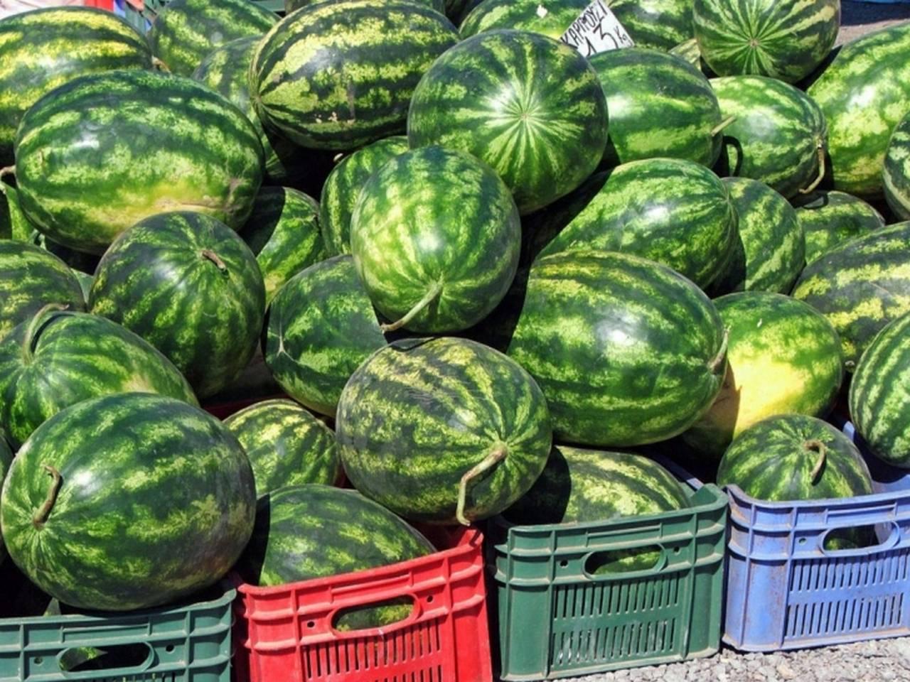 Bismil'de Havanın ısınmasıyla karpuz satışları arttı