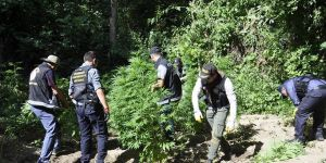 Hevsel Bahçeleri'nde uyuşturucu operasyonu