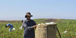 Mevsimlik tarım işçilerinin günlük ücretleri arttı