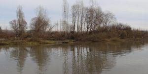 Dicle Nehri'nde binlerce meyve ağacı zarar gördü