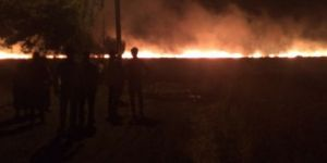 Bismil'de Yıldırım 150 dönümlük ekili alanı küle çevirdi
