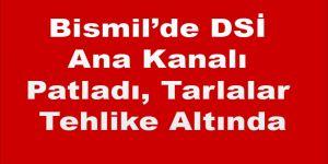 Bismil'de DSİ Ana Kanalı Patladı, Tarlalar Tehlike Altında
