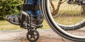 Felçli hastalara yeni ümit: Sinir nakli