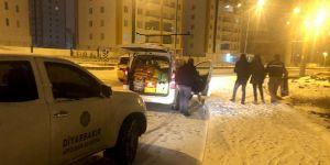Diyarbakır'da sokak hayvanları için 24 noktaya mama bırakıldı