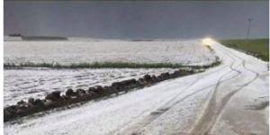 Bismil'de şiddetli dolu ekinlere zarar verdi