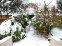 Kar yağışı Diyarbakır'ı esir aldı