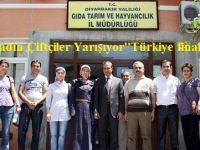 ''Kadın Çiftçiler Yarışıyor'' Türkiye finali