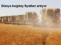Dünya buğday fiyatları artıyor