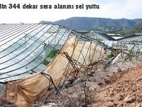 Bin 344 dekar sera alanını sel yuttu