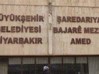 Diyarbakır Büyükşehir Belediyesi'nde Madde bağımlılıyla ilgili basın Duyurusu