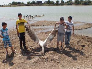 Gültepe Gölü'nün içler acısı hali